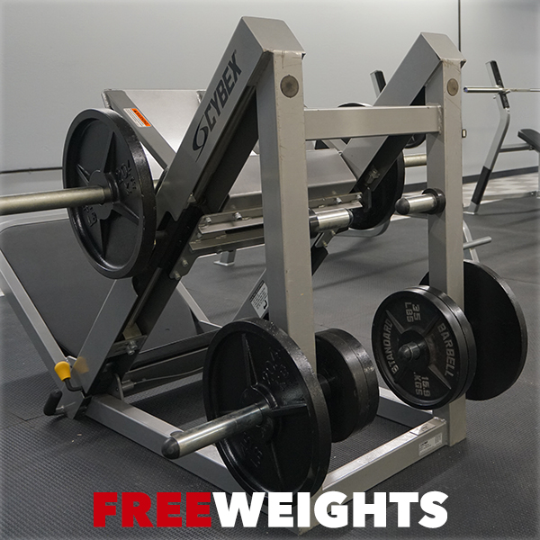 Plate Load Machines and Free Weights